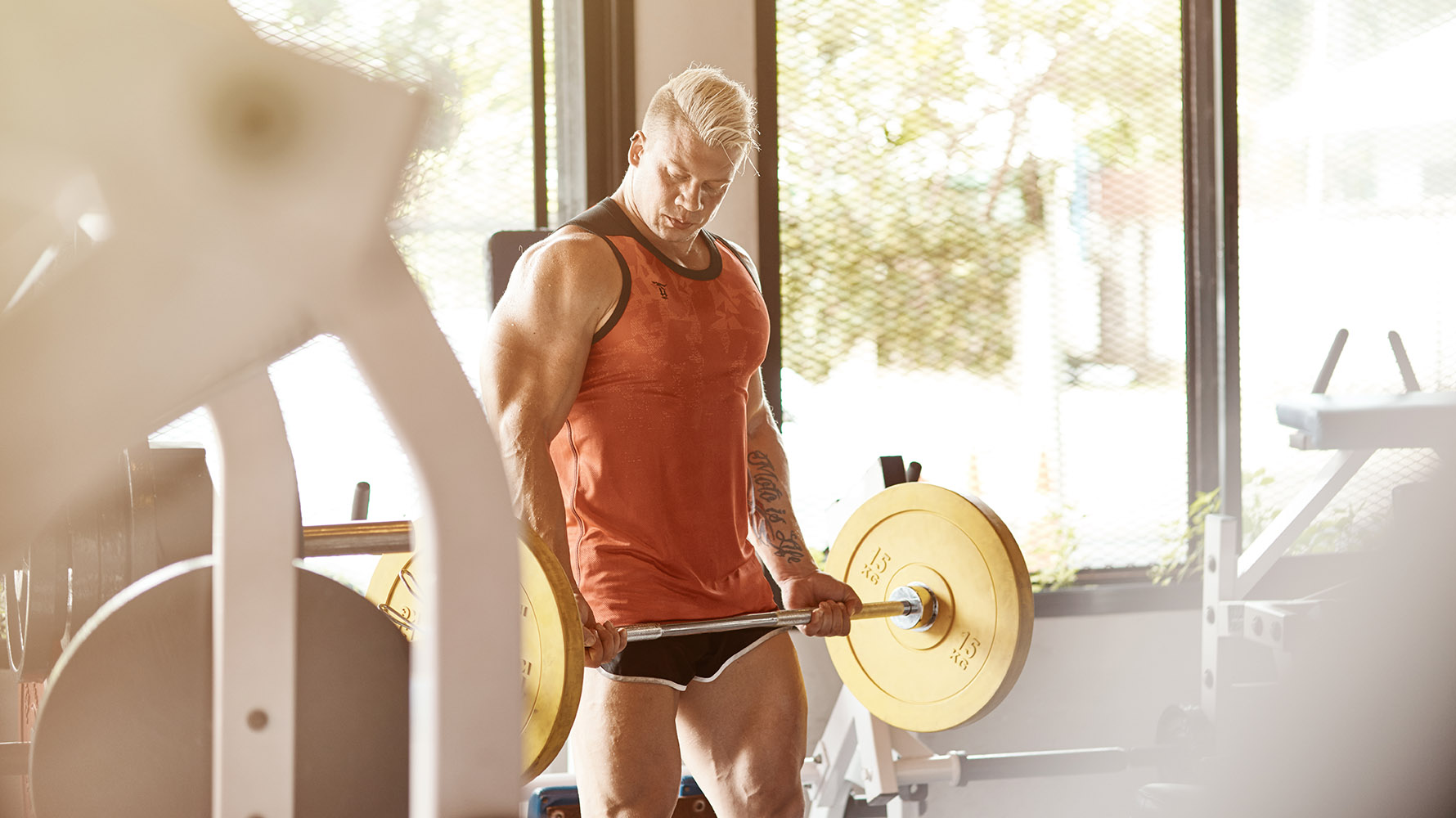 how to get your biceps wider